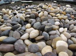 rocks for gardens home design ideas and pictures
