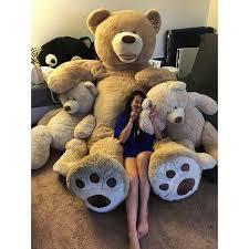 big teddy 28 best big teddy images on big teddy costco and