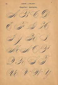 Handwritten Business Letter by Best 25 Copperplate Calligraphy Ideas On Pinterest Calligraphy