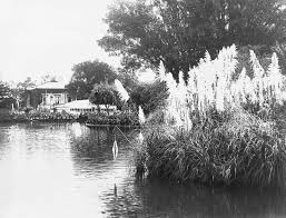 Types Of Botanical Gardens by Adelaide Botanic Garden Adelaidia