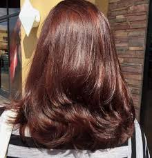 light mahogany brown hair color with what hairstyle 60 first rate shades of brown hair brown hairstyles mahogany