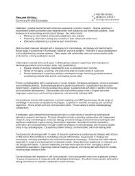 summary section resume resume summary of qualifications template