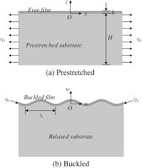 dynamic stability of a thin film bonded to a compliant substrate