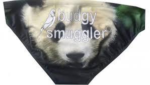 sims 3 australian shepherd template mens swimwear u2013 budgy smuggler au