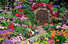 10 floral garden gates in bold color garden lovers club