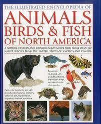 animals birds u0026 fish of north america the illustrated