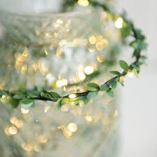 Outdoor Fairy Lights Australia by Fairy And String Lights Notonthehighstreet Com