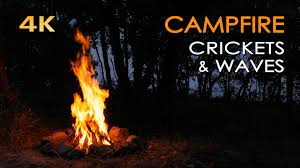 4k campfire by the sea crickets u0026 ocean waves night forest
