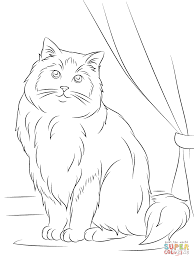 ragdoll cat coloring page free printable coloring pages