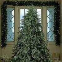 best trees rating decore