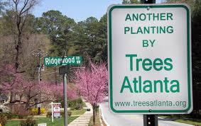 trees atlanta sale ripple it