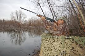 Duck Blind Images Duck Migration Report Hog Hunting Tips 88 9 Ketr
