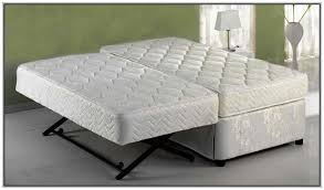 pop up trundle beds for adults beds and bed frames pinterest