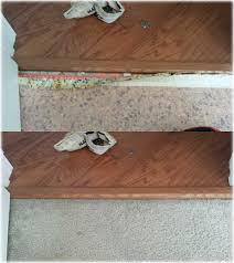 Laminate Flooring To Carpet Transition Gold Coast Flooring Gallery Carpet Cleaning Repair Tile Grout