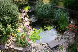 very small backyard pond surrounded by stone with waterfall plus