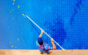How to Maintain a Swimming Pool  Clean and Clear Pool Service and