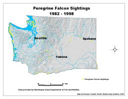 Map Of Alaska Rivers by Arctic Peregrine Falcon