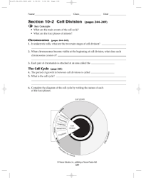 10 2 cell division worksheet answers section 10 2