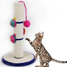 cat scratchers keebovet veterinary ultrasound equipment