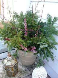 images about outdoor christmas planters on pinterest and idolza