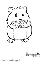 Coloriage Hamster  Les beaux dessins de Animaux à imprimer et colorier
