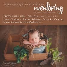 newborn posing newborn posing creative photography business mentoring travel