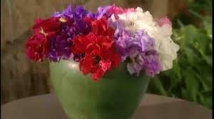 video how to arrange sweet pea flowers in a vase martha stewart