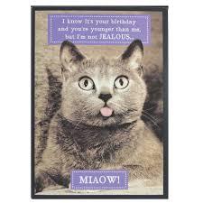 birthday card birthday cards with cats printable birthday