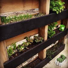 diy vertical herb garden beautiful diy vertical herb garden ideas 2015
