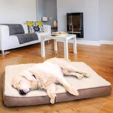 Dog Armoire Furniture Pet Furniture Sale You U0027ll Love Wayfair
