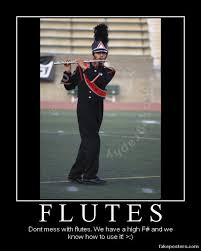 Flute Memes - dont mess with flutes by digiorchid on deviantart