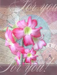 Invitation Card With Photo Floral Thank You Card With Beautiful Realistic Adenium Pink