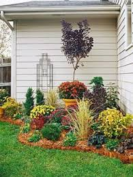 Landscaping Ideas Backyard On A Budget Cheap Basic Plants Gardening Pinterest Plants Landscaping