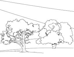 tree coloring pages printable oaks maple page nature of a house