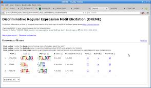 Meme Motif - chip seq analysis exercise december 2014 workshop 1 0