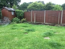 bowdon ms sufferer has garden transformed after winning hale