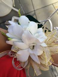 White Orchid Corsage Corsage White Orchids Gold Ribbon Yelp