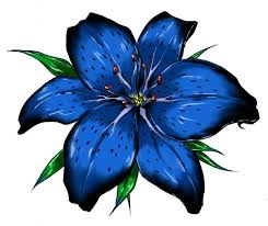 blue lilies clipart blue pencil and in color clipart blue