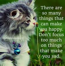 Awesome Quotes About Cats Being - happiness quote via www ioopsie com being happy happiness