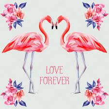 slogan love forever rose and pink flamingos u2014 stock vector