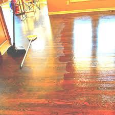 14 best restore wood floors images on hardwood floors