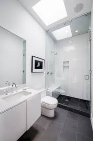 architecture white bathroom with black tile floor and skylight