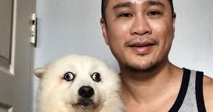 Confused Dog Meme - confused dog unintentionally sparks a photoshop battle