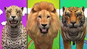 finger family rhymes for children cheetah lion tiger cartoon