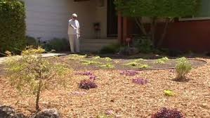 hilarious hoa stories hoa horror stories homeowners who fought and came out on top