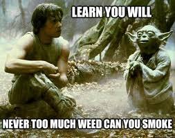 Marijuana Meme - yoda star wars weed memes weed memes