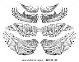 the 25 best eagle wings ideas on pinterest eagle bird bald