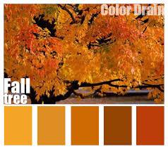 color drain free blogger backgrounds wedding color schemes