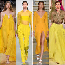 shades of yellow the changing shades of yellow bees taylor