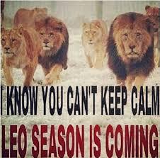 Leo Season Meme - related images leo the glamorous lion pinterest zodiac